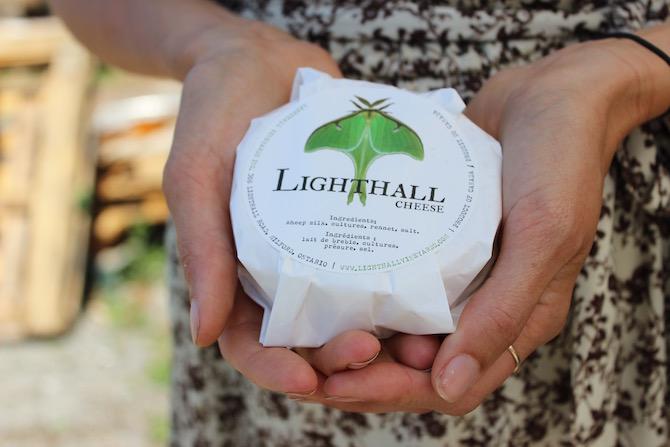 Lighthall Vineyards, Millford, Ontario