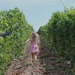 Route des vins en Ontario, 2e partie : comté de Prince Edward