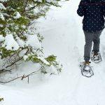 Guide touristique hivernal de Halifax