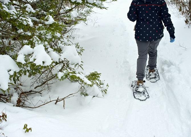 Snowshoeing by a tree, Nova Scotia Vacation, kids activities, winter season