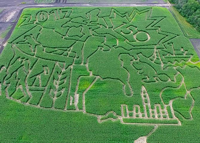 Corn Maze at Deer Meadow Farms, Winnipeg, Manitoba