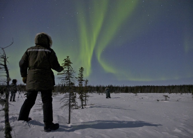 The Northern Lights in Churchill, Manitoba (©Travel Manitoba)