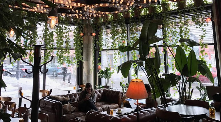 Crossover Cafés: Mixing Coffee Culture and Nightlife