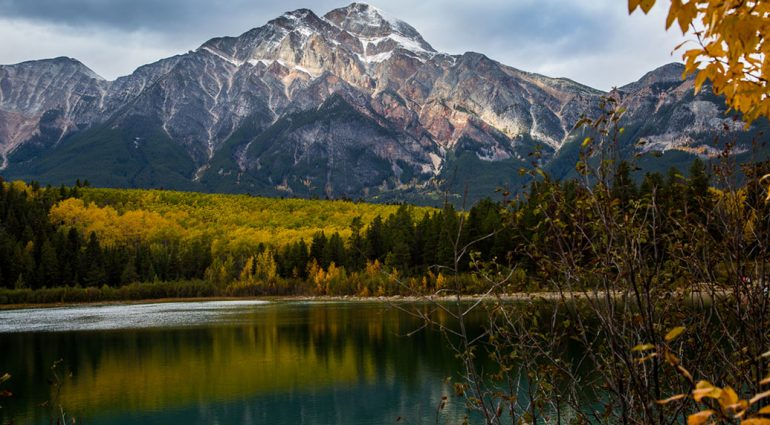 An Insider's Guide to Jasper