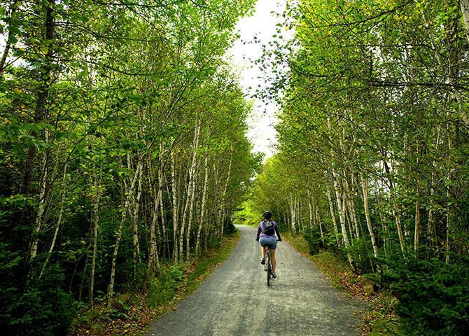 Halifax's Beechville Lakeside Timberlea Trail (©Discover Halifax)