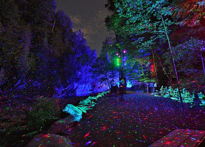 Plongez dans l'expérience interactive de Foresta Lumina (© Parc de la Gorge de Coaticook)
