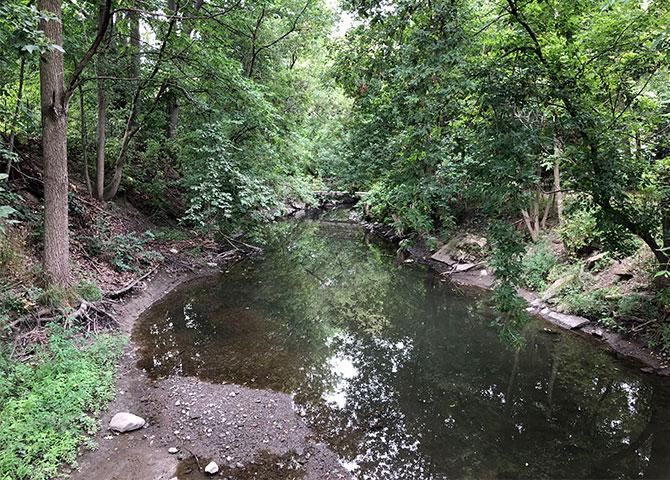 Découvrez le sentier Brock Trail sur un segway
