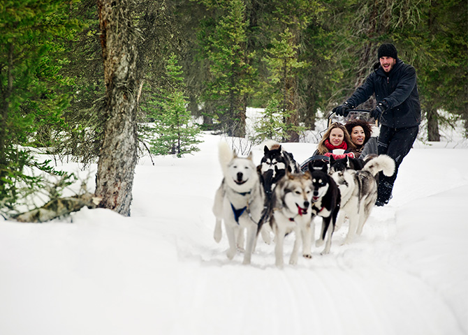 L'expérience peut être une aventure avec nuitée en camping dans une région sauvage de l'Alberta.